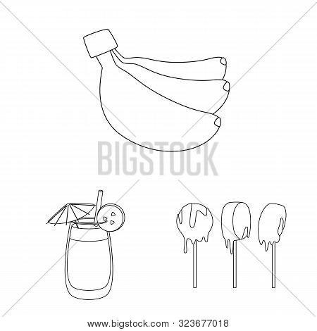 Vector Illustration Of Organic And Potassium Icon. Collection Of Organic And Diet Vector Icon For St