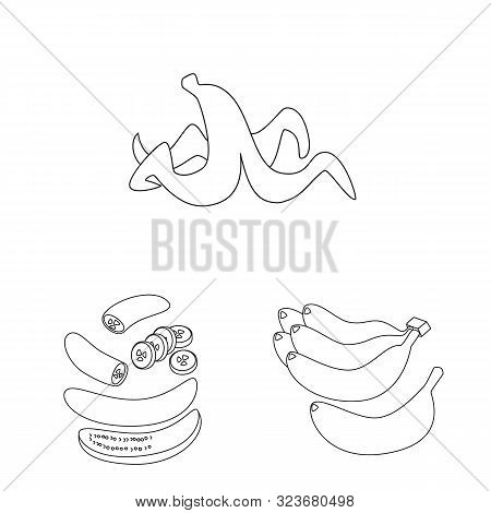Vector Illustration Of Organic And Potassium Symbol. Collection Of Organic And Diet Stock Vector Ill