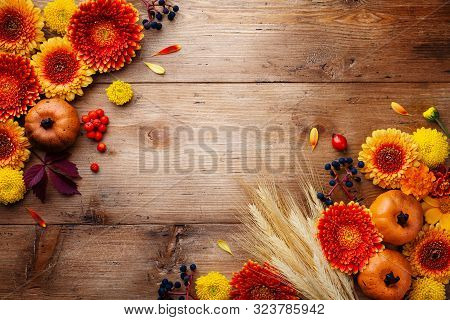 Autumn Background With Orange And Yellow Gerbera Flowers, Decorative Pumpkins, Berries, Wheat Ears.