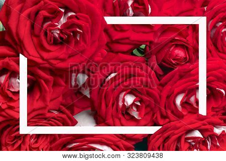 Pattern Of Red Roses Bouquet  And White Frame Flat Lay  Holiday Concept Top View   Floral Card