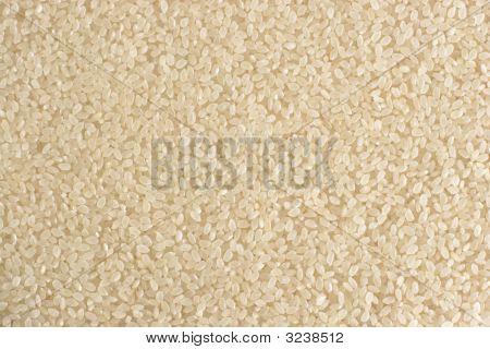 Rice Texture