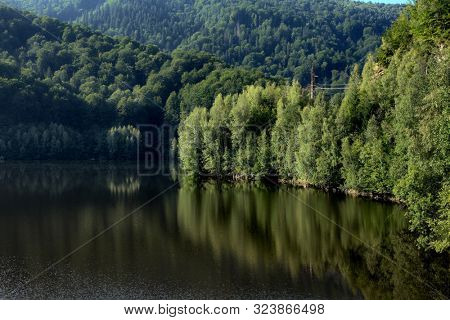 forest reflection on water of alpine lake in Transylvania, Romania