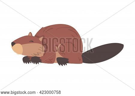 Cute Funny Brown Beaver Wild Rodent Animal Cartoon Vector Illustration