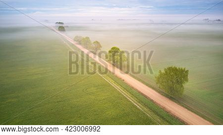 Aerial View Of Rural Dirt Road And Trees Covered By Fog. Early Misty Morning. Spring Summer Fields.