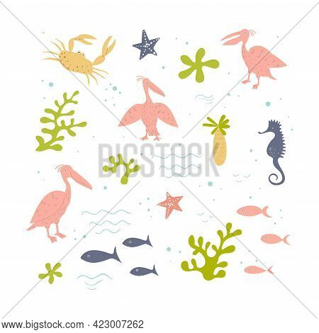 Vector Set Of Pink Pelicans And Sea Items. Marine Theme. Hand Drawn Illusatration.
