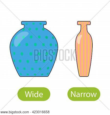 Wide And Narrow Vase. The Concept Of Teaching Children Wide And Narrow Opposite Adjectives. Vector I