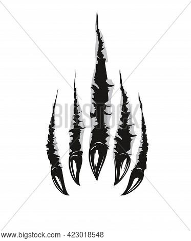 Grizzly Bear Claw Marks And Scratches, Vector Torn Cracks Of Wild Animal. Grizzly Bear Beast Paw Mar