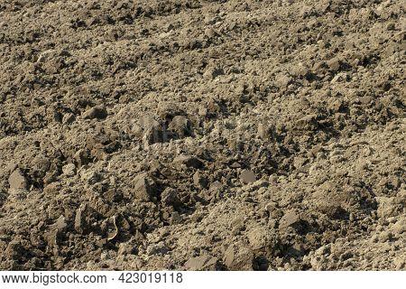 Plowed Land, Tillage In Spring, Agricultural Background.
