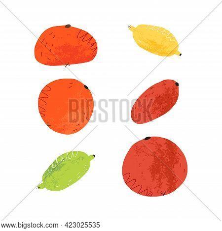 Retro Style Textured Citrus Fruits Set. Orange, Lime, Lemon, Kumquat, Tangerine. Cartoon Vector Isol