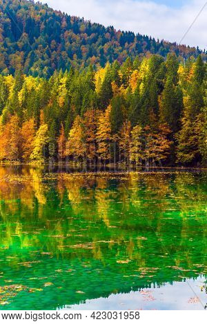 Flood after rain. The quiet lake in Northern Italy, Lago de Fusine. Scenic reflections of multicolored forests in the smooth water of the lake. Concept of cultural and ecological tourism