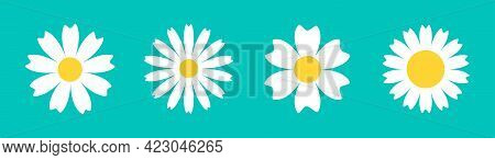 Chamomile Daisy Round Icon Line Set. White Flower. Camomile Petal. Cute Plant Collection. Growing Co