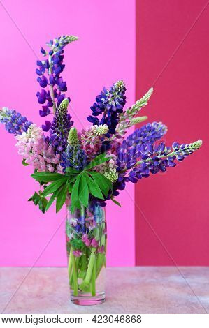 A Bouquet Of Lupines In A Vase. Multicolored Summer Flowers Pink And Purple On A Bright Background.