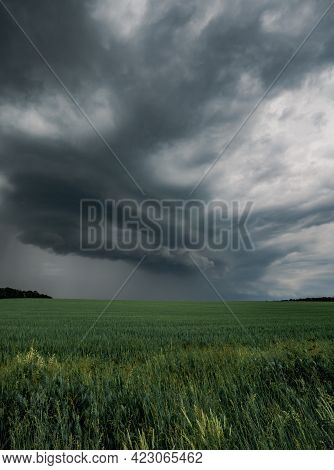 Cloudy Landscape Of A Field With Green Grass. Dramatic Threatening Weather Before Storm, Weather And