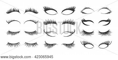 Set For Growing The Eyelashes, Professional Makeup