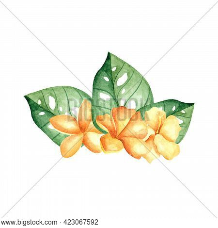 Watercolor Hibiscus. Yellow Tropical Plants With Leaves. Tropical Flowers With Monstera Leaves. Desi