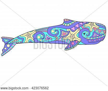Sperm Whale - Vector Linear Full Color Illustration - With Marine Mammal. Sea Animal Sperm Whale. Te