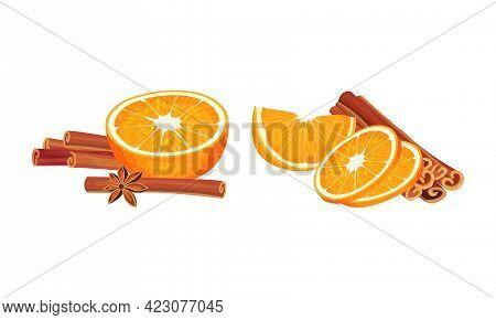 Dried Cinnamon Bark Strips Or Sticks With Orange Slices Vector Set