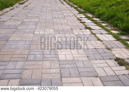 Concrete Bricks Footpath On The Green Grass In The Park, Abstract Background Of Tiles, Footpath, Sid
