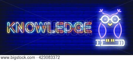 Knowledge Neon Text With Owl On Book. Education And Knowledge Concept. Advertisement Design. Night B