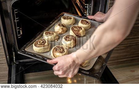 Womens Hands Are Putting A Baking Tray With Uncooked Cinnamon Rolls In A Hot Oven. Concept Of The Co