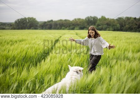 Woman With Big White Sheepdog Walking On Green Rye Field. Farming And Countryside Life.