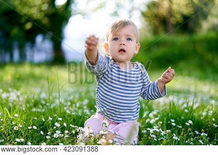 Child Kneels In The Middle Of A Flower Meadow And Stretches His Arms Forward