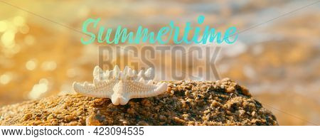 a starfish on a rock on the beach, with the sea in the background, and the text summertime, in a panoramic format to use as web banner or header