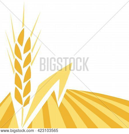 Background With Wheat. Agricultural Image Of Golden Ear Of Barley Or Rye.