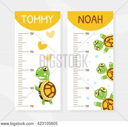 Height Chart With Happy Green Turtle With Shell Vector Illustration