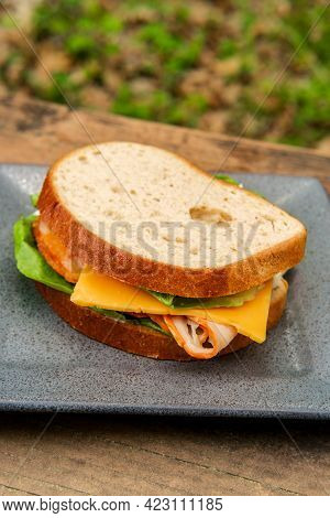 Buffalo Chicken American Cheese Sandwich On Picnic Table