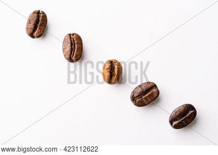 Coffee Bean Arabica And Robusta Stages Of Roasting Light Roast, Medium Roast, Medium-dark, Dark Roas
