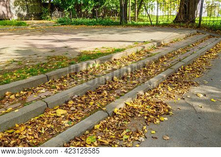 Autumnal Dry Foliage Is Laying Near Steps Of Pathway In City Park.
