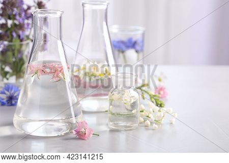 Laboratory Glassware With Different Flowers On Light Table, Space For Text. Essential Oil Extraction