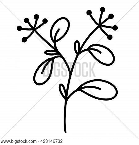 Vector Icon Sprig With Leaves. Hand-drawn Black Doodle. Outline Of A Branch With Inflorescences And