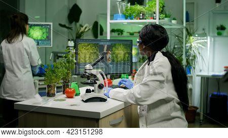 Biologist Researcher Examining Organic Leaf Slide For Medical Expertise Under Microscope. Chemist Sc