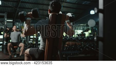 Black View Of Muscular Man Guy Lifting Two Dumbbell During Workout While Sitting On Bench, Bodybuild