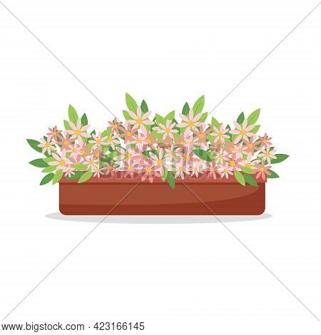 Pink Daisies In A Pot, Houseplants, Cute Pink Flowers, Vector Illustration In Flat Style, Cartoon