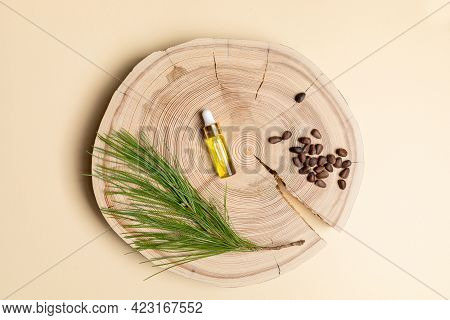 Small Glass Bottle With Coniferous Spa Aromatic Essential Cedar Oil, Branch, Nuts On Wooden Saw Cut