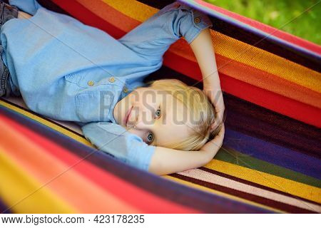 Cute Little Blond Caucasian Boy Having Fun With Multicolored Hammock In Backyard Or Outdoor Playgrou