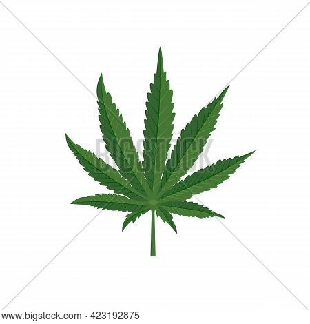 Marijuana Icon. Green Cannabis Leaves. Organic Natural Drug. Hemp Medical. Vector Illustration Flat