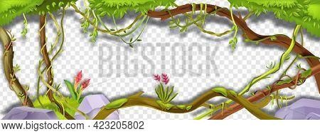 Jungle Liana Vector Green Frame, Tropical Vine Branch Illustration On Transparent Background. Paradi