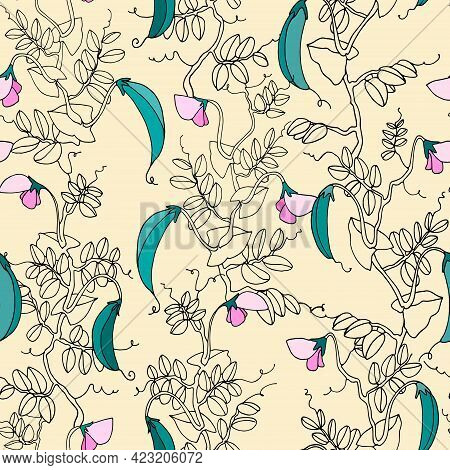 Seamless Pattern. Pea Plant With Pods And Flowers. Vector Illustration, Line Art On Light-colored Ba
