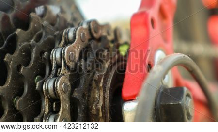 Close-up Of A Rear Set Of Gear Shifting Sprockets On The Rear Wheel Of A Modern Mountain Bike With C