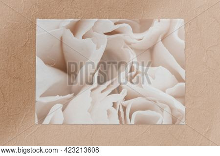 White carnation flower card on brown background template