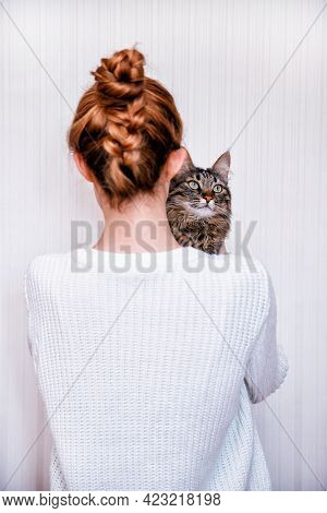 A Tabby Cat Sits On A Shoulder On A White Background.