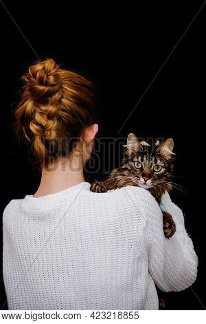 A Tabby Cat Sits On A Shoulder On A Black Background.