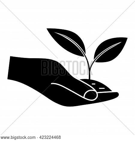 Growing Leaves In The Hand. Giving Hand With Young Plant In Soil. Can Be Used For Natural Farm Produ