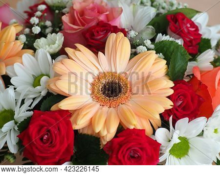 A Beautiful Bouquet Of Gerberas, Chrysanthemums And Roses. Postcard For The Holiday. Mixed Flower Ar