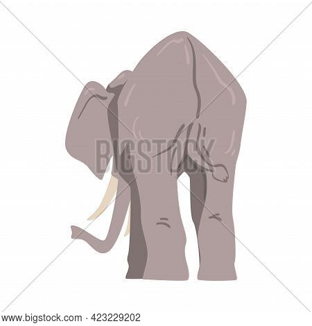 Standing Elephant As Large African Animal With Trunk, Tusks, Ear Flaps And Massive Legs Back View Ve