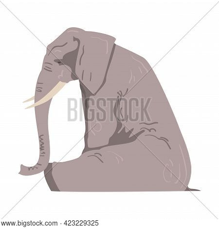 Sitting Elephant As Large African Animal With Trunk, Tusks, Ear Flaps And Massive Legs Side View Vec